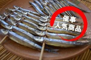 きびなご一夜干し 6尾程が5串 鹿児島県種子島産